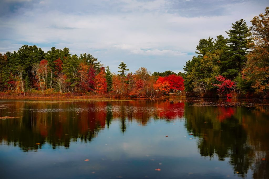 Fall_lake_photo_sjhfinancial